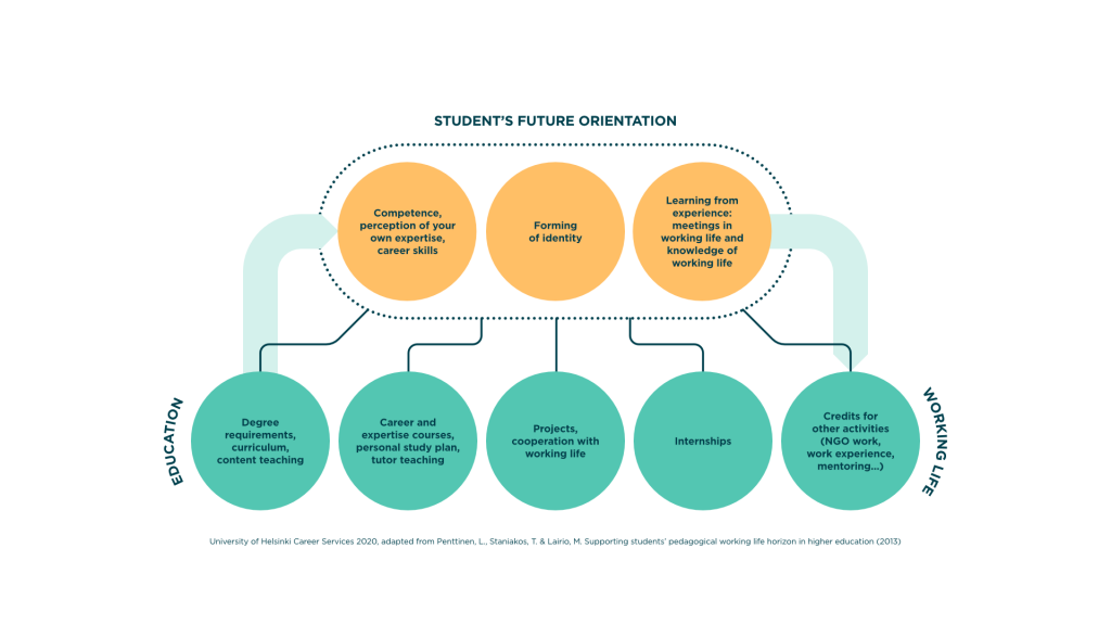 As the student orients himself / herself towards his / her own future, he / she processes his / her own skills, constructive identity as well as his / her own knowledge and experiences of working life. These forward-looking considerations are influenced by a wide range of experiences along the study path, such as degree requirements and substantive teaching, career and expertise courses, supervision, projects, internships, and other study-related activities such as organizational work or mentoring.